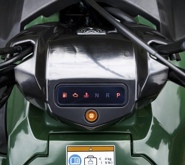 2018-Yamaha-YFM700FWBD-EU-Solid-Green-Detail-007